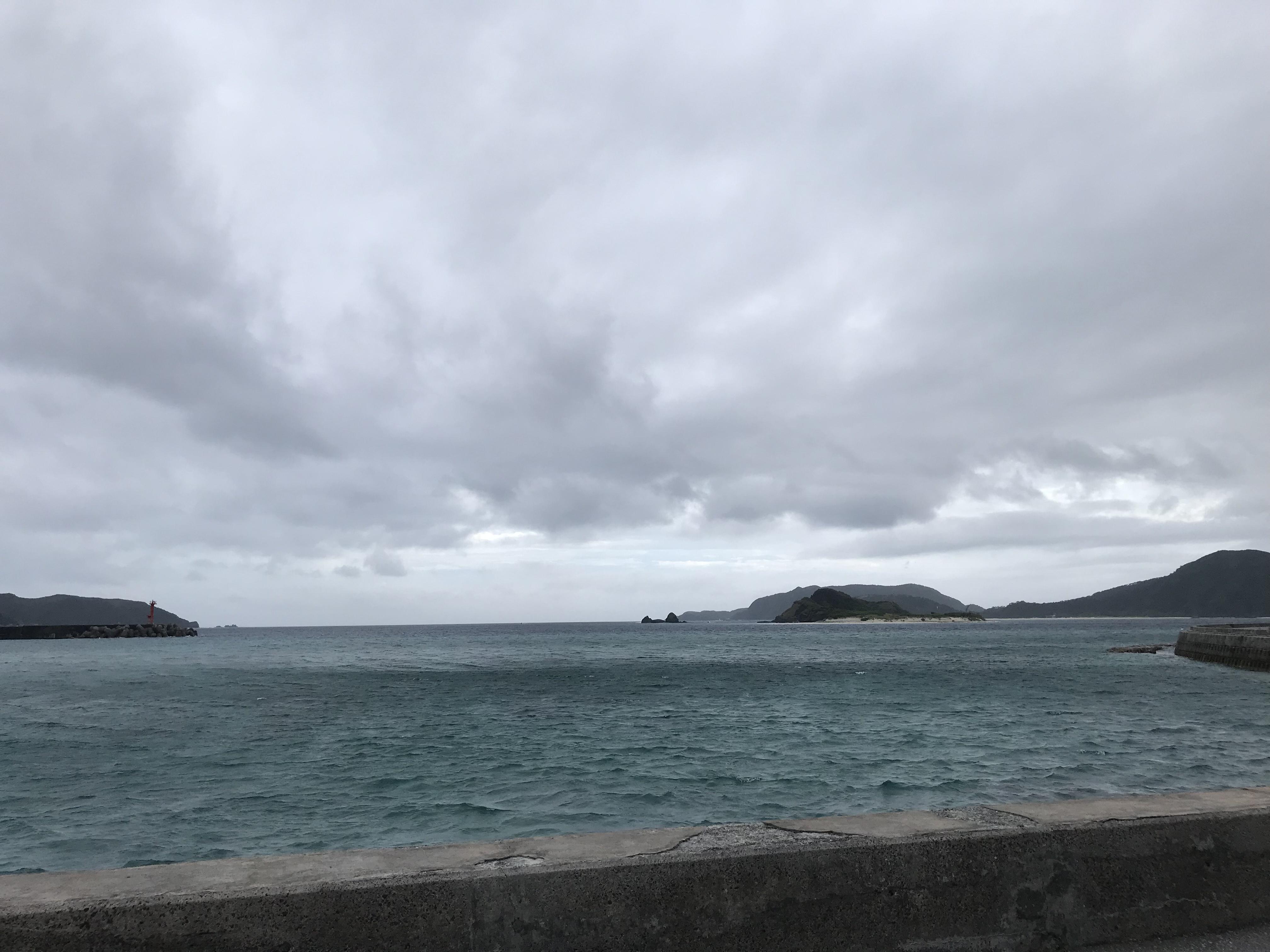うーん、雨、もういいです (2019.6/14)